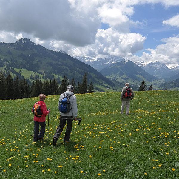 Wandertag im Mai